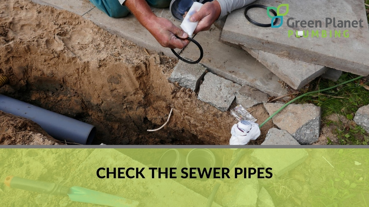 Check the Sewer Pipes