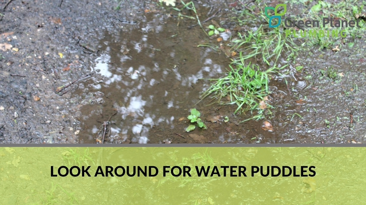 Look Around for Water Puddles