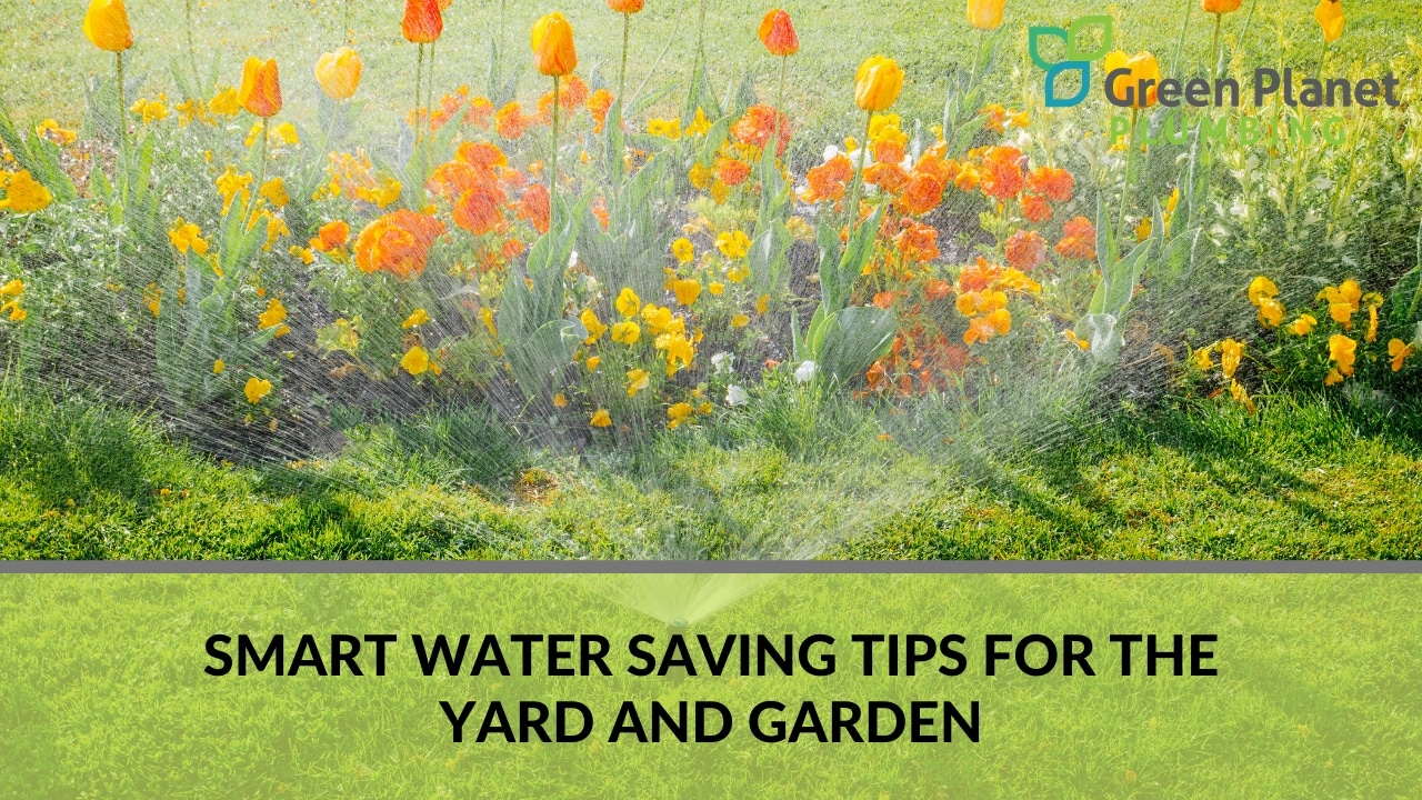 Smart Water Saving Tips for the Yard and Garden