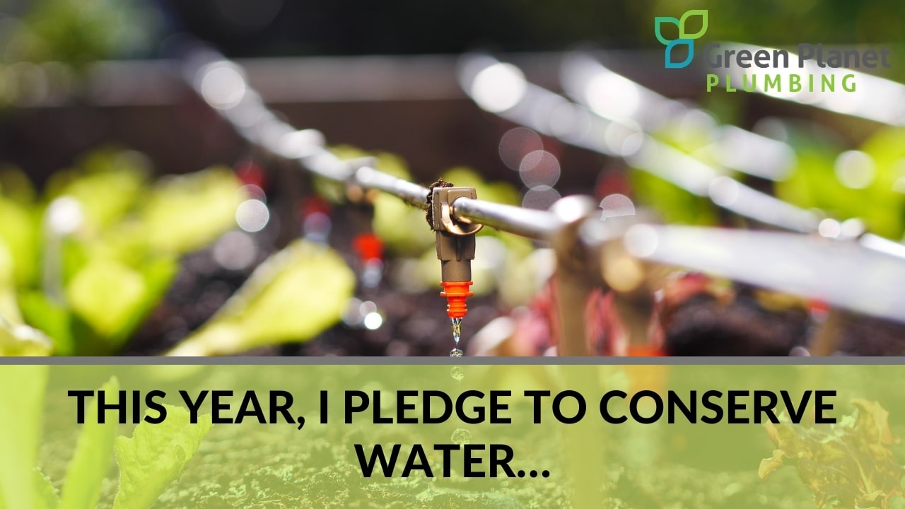 This Year, I Pledge to Conserve Water…
